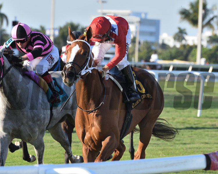 Lucky Long wins the 2019 Claiming Crown Tiara at Gulfstream Park<br /> Coglianese Photos/Ryan Thompson