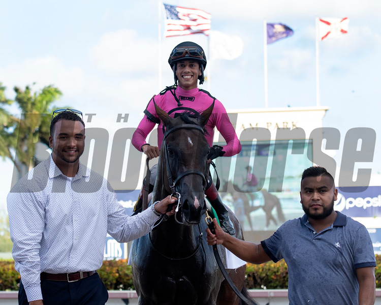 Two Sixty wins the 2019 FTBOA Florida Sire My Dear Girl Stakes at Gulfstream Park<br /> Coglianese Photos/Ryan Thompson