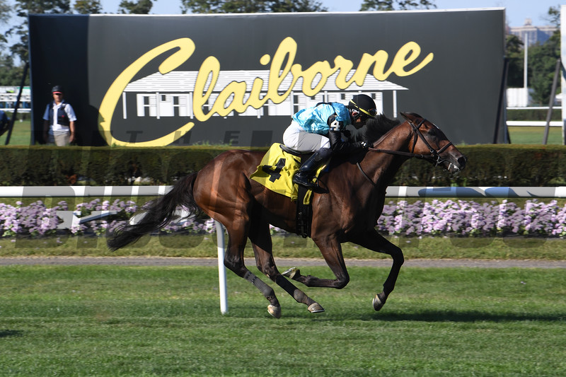 Mr. Alec - Maiden Win, Belmont Park, September 15, 2019<br /> Coglianese Photos