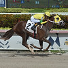 Amelia Madelyn - Maiden Win, Gulfstream Park, September 20, 2019<br /> Coglianese Photos/Lauren King