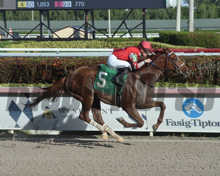 Mayberry Deputy wins a maiden special weight December 28, 2019 at Gulfstream Park. Photo: Coglianese Photos/Lauren King