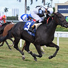 Raki wins the 2019 Miss Gracie Stakes at Gulfstream Park<br /> Coglianese Photos/Ryan Thompson