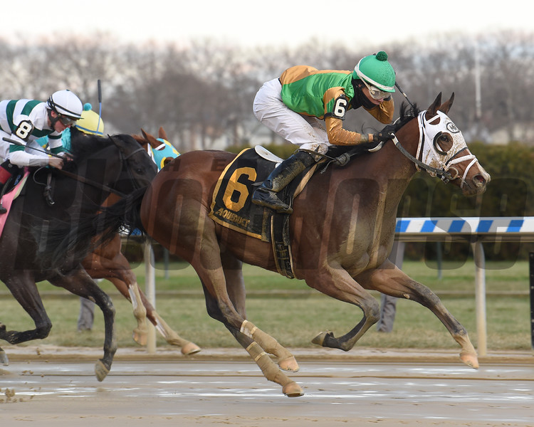 A Freud of Mama wins the 2019 New York Stallion Series Stakes<br /> Coglianese Photos