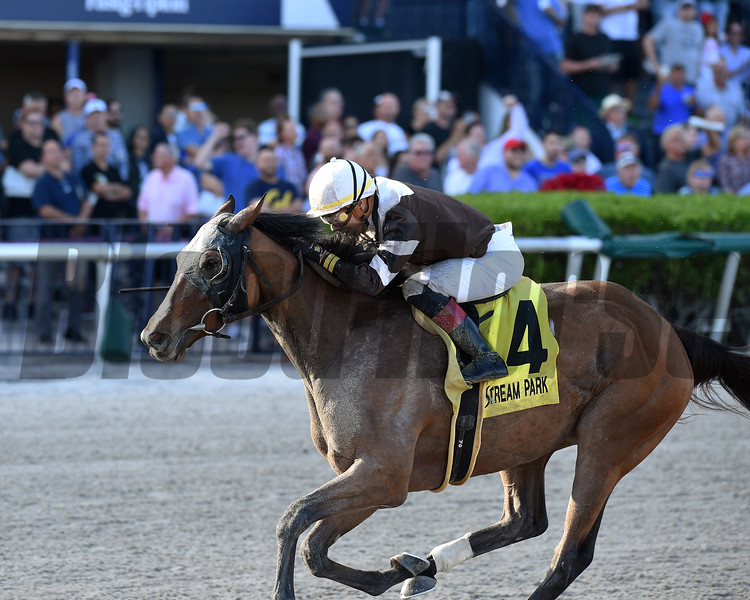 Pink Sands wins the 2019 Rampart Stakes at Gulfstream Park<br /> Coglianese Photos/Ryan Thompson