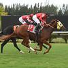Little Bit Good wins a maiden claiming race October 9, 2019 at Gulfstream Park West. Photo: Coglianese Photos/Lauren King