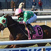 Saratoga Treasure wins the 2019 Autumn Days Stakes at Aqueduct<br /> Coglianese Photos/Chelsea Durand