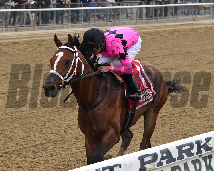 Maximum Security wins the 2019 Bold Ruler Handicap at Belmont Park<br /> Coglianese Photos/Chelsea Durand