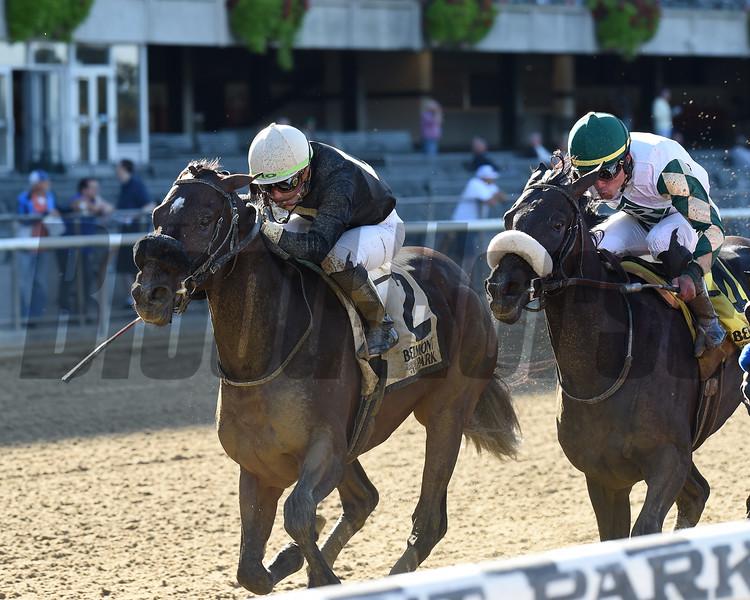 Cleon Jones wins the 2019 Bertram F. Bongard Stakes at Belmont Park<br /> Coglianese Photos/Chelsea Durand