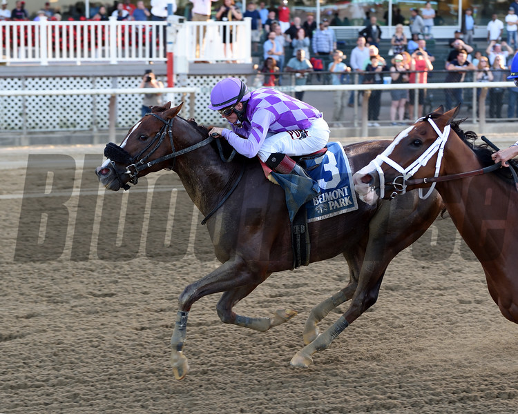 Pat On the Back wins the 2019 Kelso at Belmont Park<br /> Coglianese Photos/Chelsea Durand