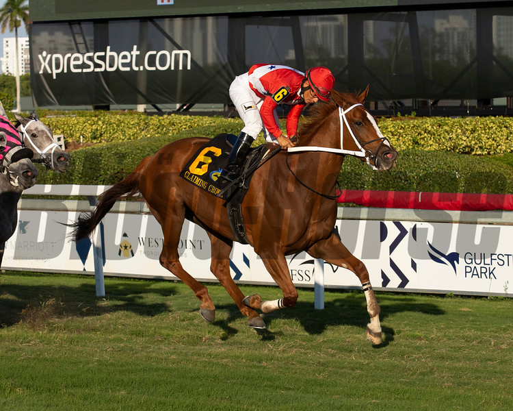 Lucky Long wins the 2019 Claiming Crown Tiara at Gulfstream Park<br /> Coglianese Photos/Andie Biancone