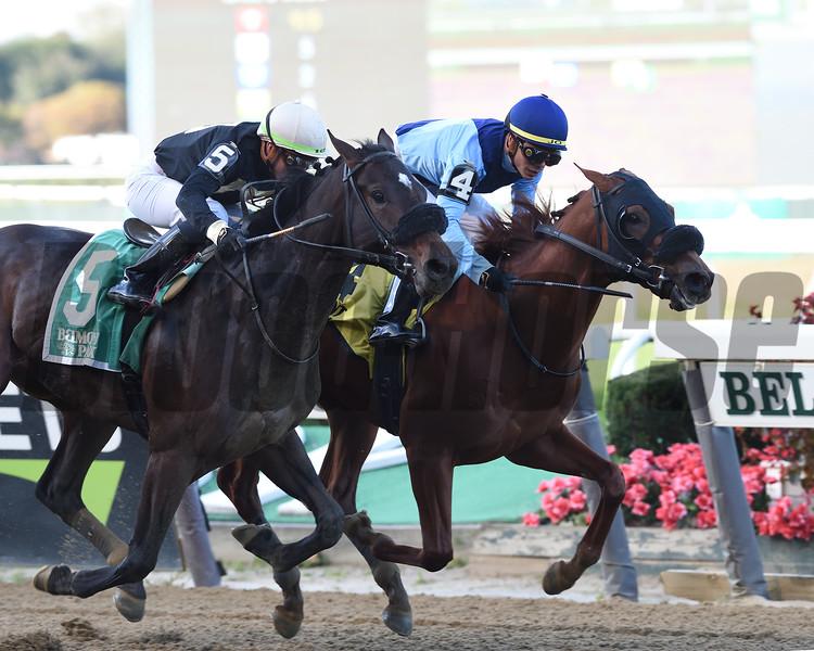 Captain Bombastic wins the 2019 Sleepy Hollow Stakes<br /> Coglianese Photos