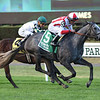 New and Improved wins the 2019 Sands Point Stakes at Belmont Park<br /> Coglianese Photos