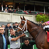 Maximum Security wins the 2019 Bold Ruler at Belmont Park<br /> Coglianese Photos/Susie Raisher