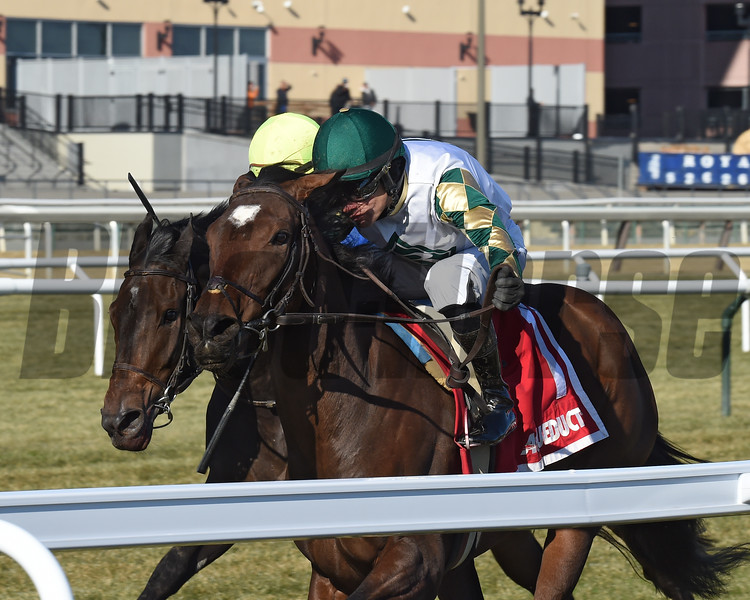 Feel Glorious wins the 2019 Winter Memories Stakes at Aqueduct<br /> Coglianese Photos/Chelsea Durand