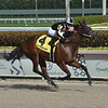 Lady's Island wins the 2019 Sugar Swirl Stakes at Gulfstream Park<br /> Coglianese Photos/Lauren King