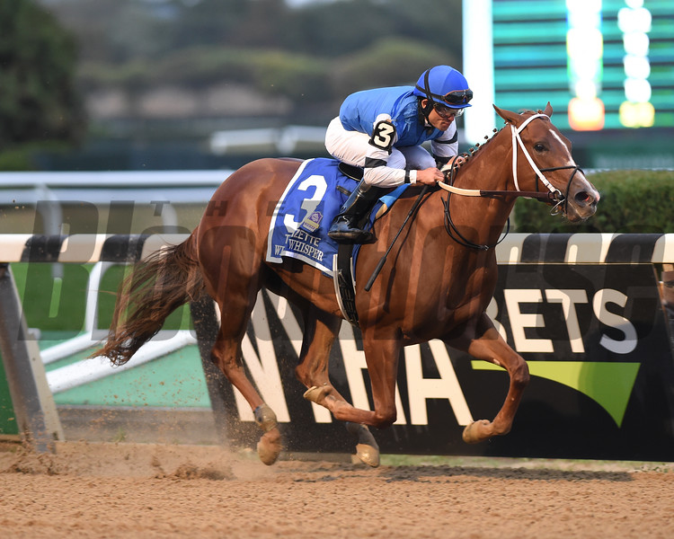 Wicked Whisper wins the 2019 Frizette Stakes at Belmont Park. Photo: Coglianese Photos