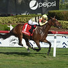 Mitchell Road wins the 2019 My Charmer Stakes at Gulfstream Park<br /> Coglianese Photos/Lauren King
