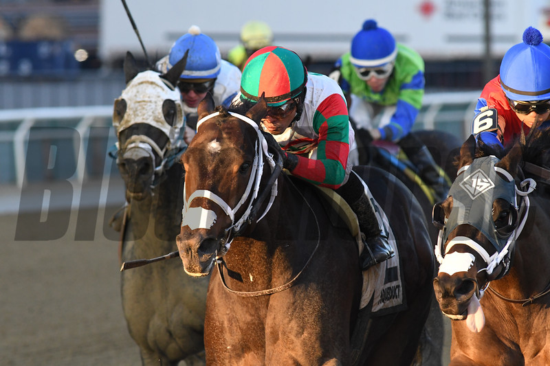 Firenze Fire wins the 2019 Gravesend Stakes at Aqueduct<br /> Coglianese Photos/Chelsea Durand