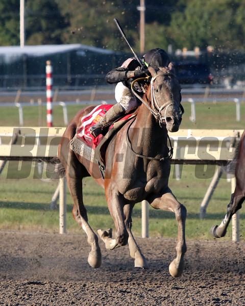 Math Wizard with Irad Ortiz Jr. win the 40th Running of the Pennsylvania Derby (GI) at Parx on September 21, 2019. Photo By: Chad B. Harmon