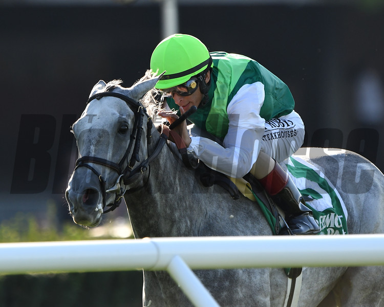 Significant Form wins the 2019 Noble Damsel Stakes at Belmont Park<br /> Coglianese Photos/Adam Coglianese