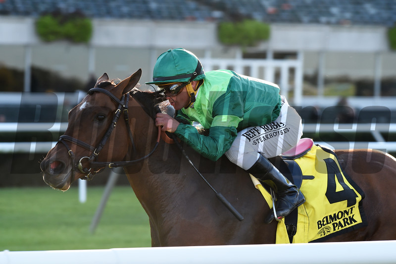 Fifty Five wins the 2019 Ticonderoga Stakes at Belmont Park<br /> Coglianese Photos/Chelsea Durand