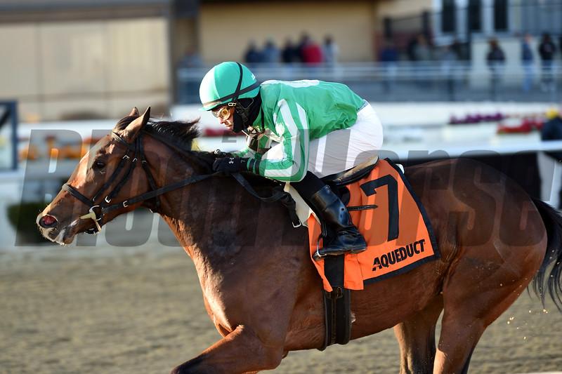 Big Q wins the 2019 Key Cents Stakes at Aqueduct. Photo: Coglianese Photos/Elsa Lorieul