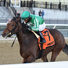 Big Q wins the 2019 Key Cents Stakes at Aqueduct. Photo: Coglianese Photos/Chelsea Durand