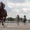 Shivaree - Maiden Win, Gulfstream Park West, November 23, 2019<br /> Coglianese Photos/Ryan Thompson