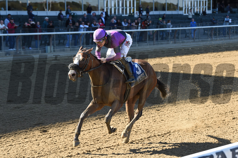 Critical Value wins the 2019 Maid of the Mist Stakes<br /> Coglianese Photos/Chelsea Durand