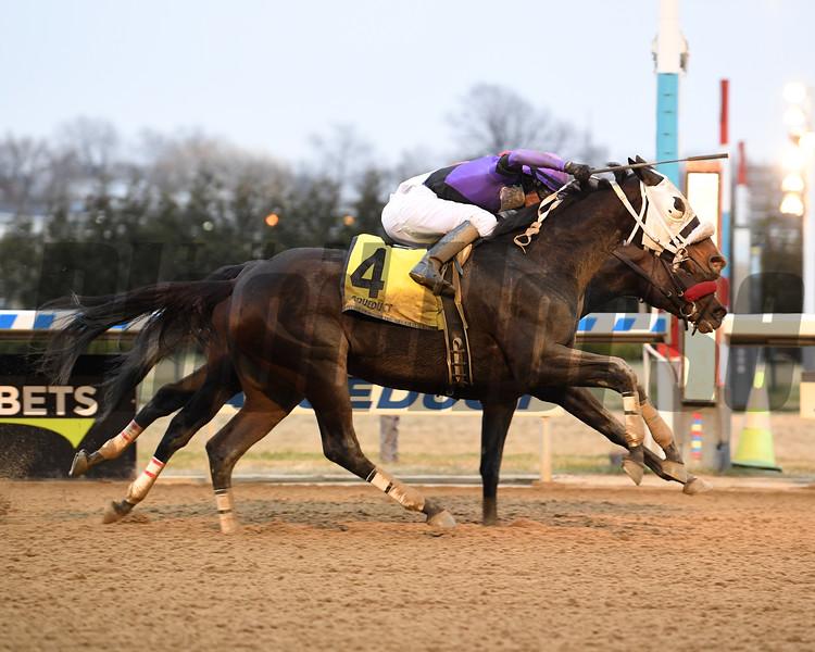 Mrs. Orb wins the Bay Ridge Stakes Sunday, December 29, 2019 at Aqueduct. Photo: Coglianese Photos/Susie Raisher