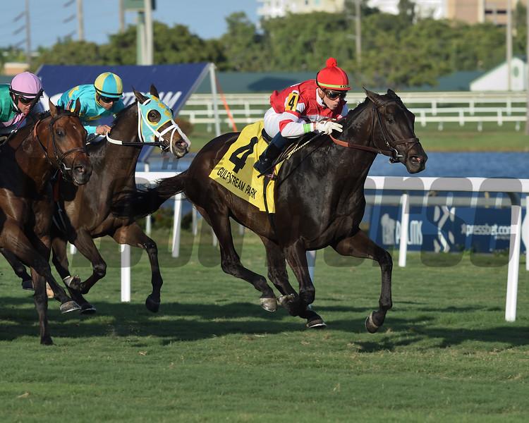 Instilled Regard wins the 2019 Ft. Lauderdale Stakes at Gulfstream Park<br /> Coglianese Photos