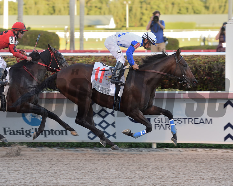 The Brother Slew wins the 2019 Clasico Internacional del Caribe Stakes at Gulfstream Park<br /> Coglianese Photos/Lauren King