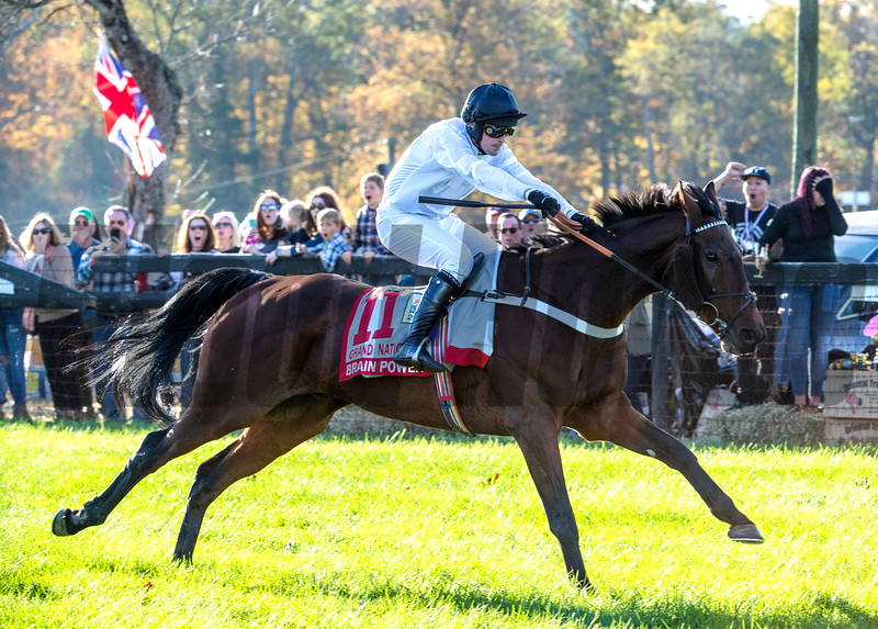 Jockey Nico De Boinvillle rides Brain Power to the win in  the Grand National G1 at Far Hills Race Meeting in Far Hills, N.J. October 19, 2019. Photo by (Skip Dickstein Photography)