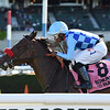 Neptune's Storm wins the 2019 Hill Prince Stakes at Belmont Park<br /> Coglianese Photos/Elsa Lorieul