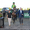 Arklow wins the 2019 Joe Hirsch Turf Classic at Belmont Park<br /> Coglianese Photos