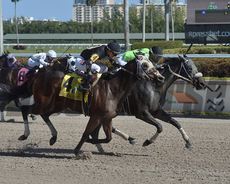 Brother Chub wins the 2019 Claiming Crown Express at Gulfstream Park<br /> Coglianese Photos/Lauren King