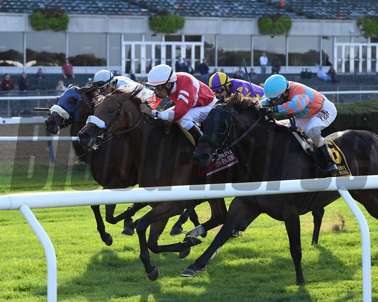 Fire Key wins the 2019 Floral Park Stakes<br /> Coglianese Photos/Joe Labozzetta