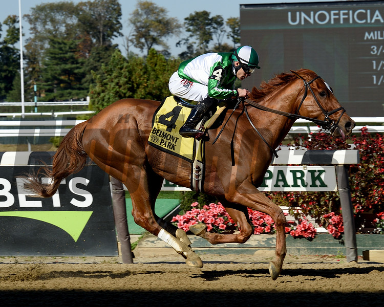 Mr. Buff wins the 2019 Empire Classic at Belmont Park<br /> Coglianese Photos/Janet Garaguso