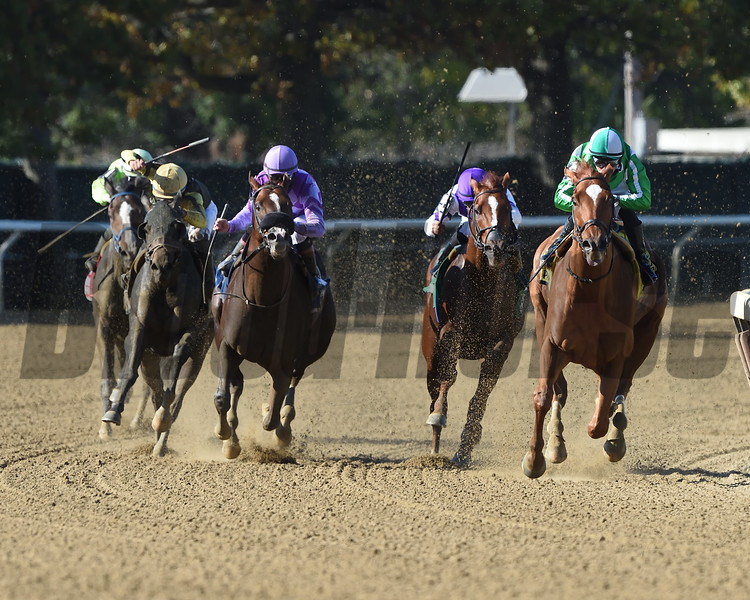 Mr. Buff wins the 2019 Empire Classic at Belmont Park<br /> Coglianese Photos/Elsa Lorieul
