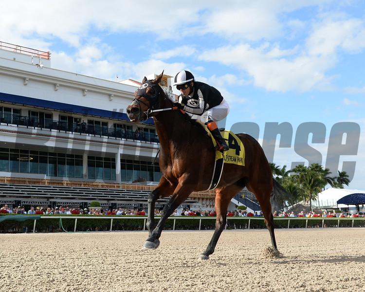 Lady's Island wins the 2019 Sugar Swirl Stakes at Gulfstream Park<br /> Coglianese Photos