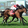 Fire Key wins the 2019 Floral Park Stakes<br /> Coglianese Photos