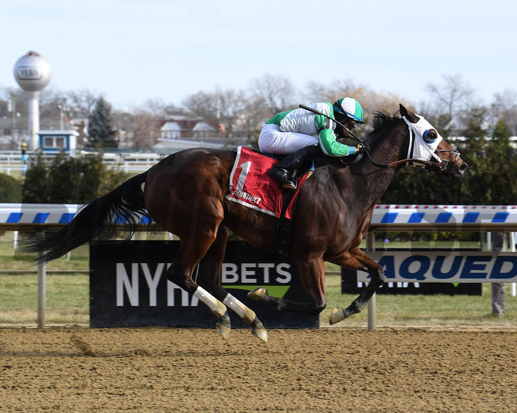 Pauseforthecause wins the 2019 Garland of Roses Stakes at Aqueduct<br /> Coglianese Photos/Susie Raisher