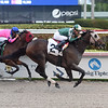 Lure Him In - SOC, Gulfstream Park, December 13, 2019   <br /> Coglianese Photos/Lauren King