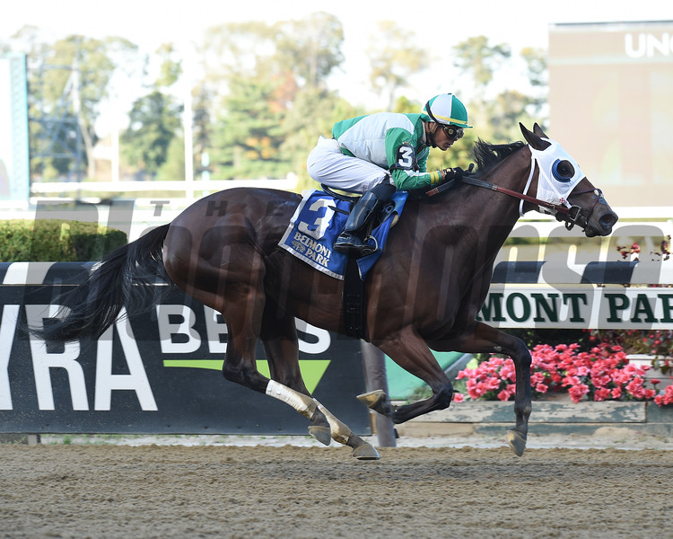 Pauseforthecause wins the 2019 Iroquois Stakes at Belmont Park<br /> Coglianese Photos/Janet Garaguso