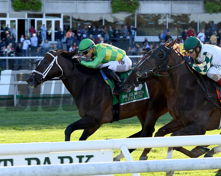Arklow wins the 2019 Joe Hirsch Turf Classic Stakes at Belmont Park<br /> Coglianese Photos/Joe Labozzetta