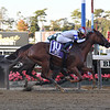Ratajkowski wins the 2019 Empire Distaff Handicap<br /> Coglianese Photos/Susie Raisher