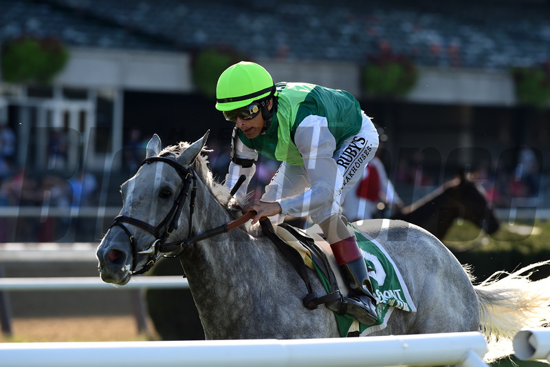 Significant Form wins the 2019 Noble Damsel Stakes at Belmont Park<br /> Coglianese Photos/Chelsea Durand