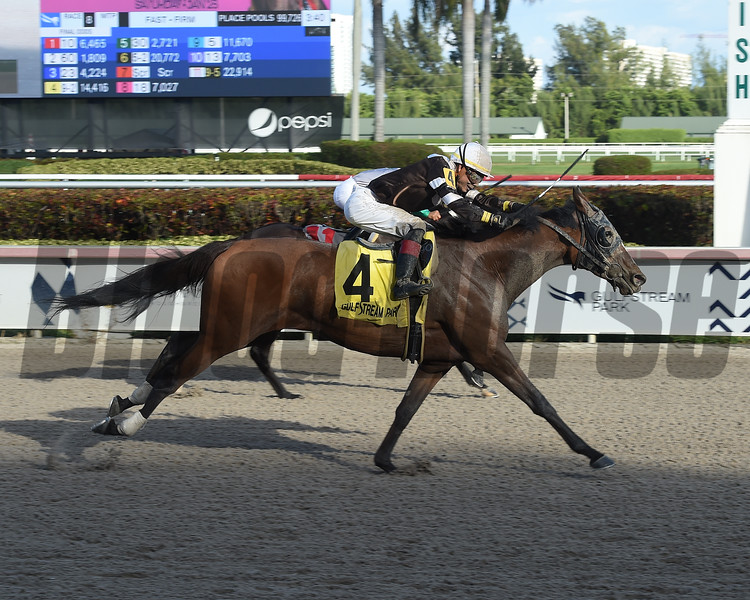 Pink Sands wins the 2019 Rampart Stakes at Gulfstream Park<br /> Coglianese Photos/Lauren King