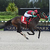 Wildwood's Beauty wins the 2019 Millions Distaff Stakes at Gulfstream Park West<br /> Coglianese Photos/Lauren King