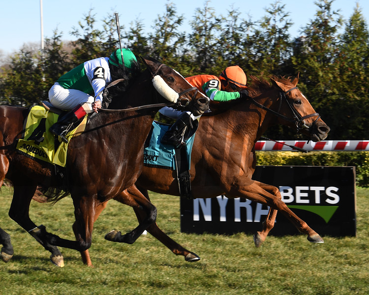 Andina Del Sur wins the 2019 Forever Together Stakes at Aqueduct<br /> Coglianese Photos/Susie Raisher